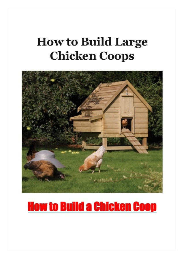 How to Build Large Chicken Coops How to Build a Chicken Coop