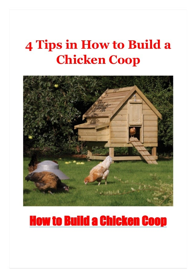 4 Tips in How to Build a Chicken Coop How to Build a Chicken Coop