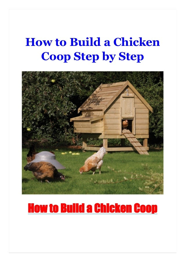 How to Build a Chicken Coop Step by Step How to Build a Chicken Coop