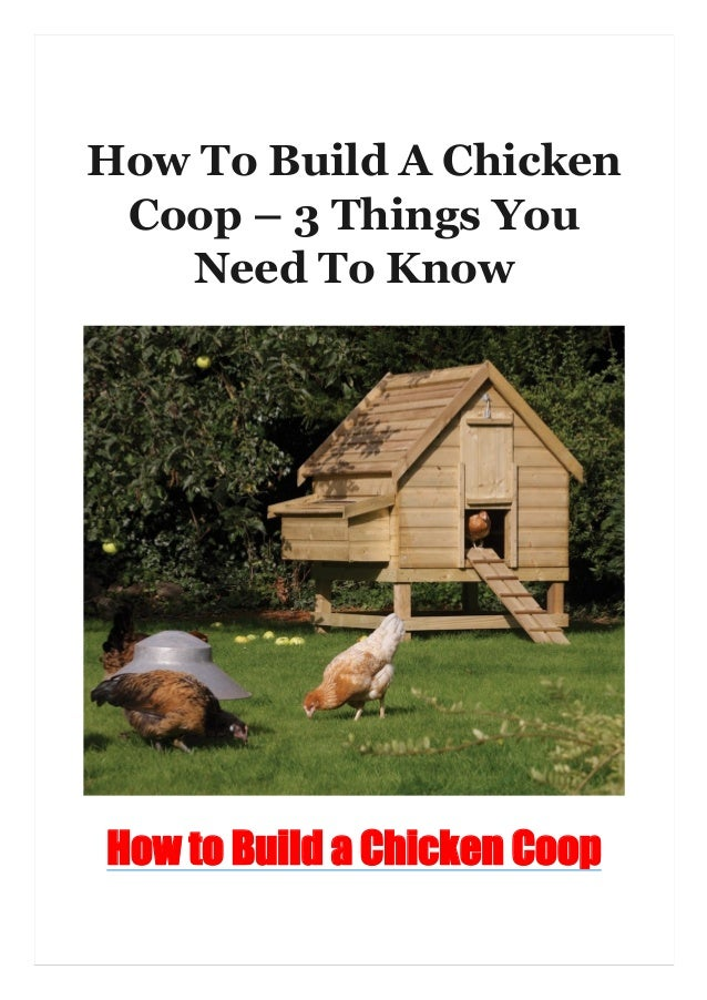 How To Build A Chicken Coop – 3 Things You Need To Know How to Build a Chicken Coop