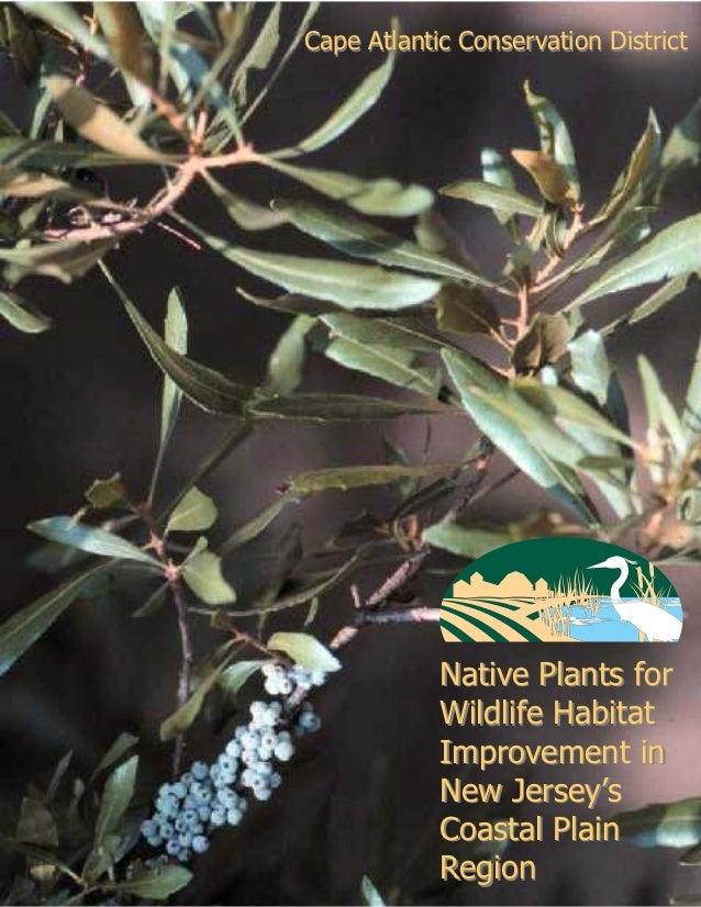 Cape Atlantic Conservation District            Native Plants for            Wildlife Habitat            Improvement in    ...