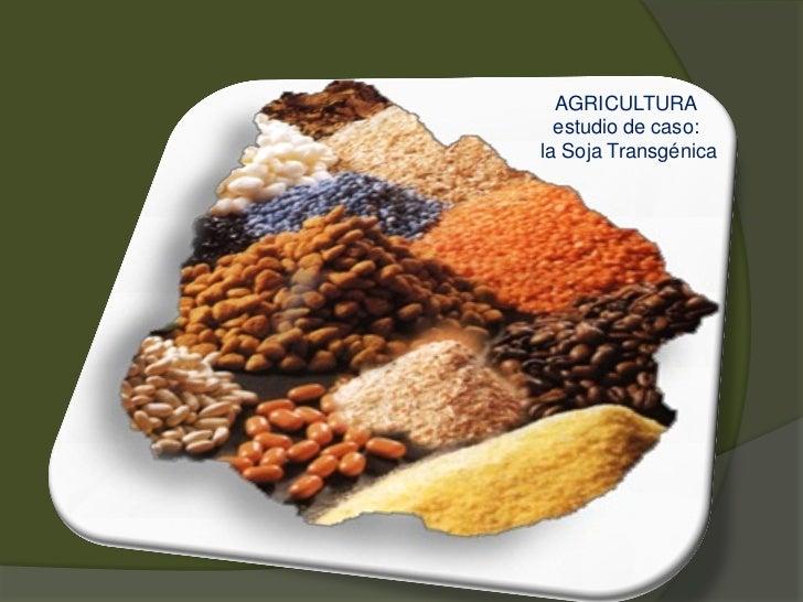 AGRICULTURA  estudio de caso:la Soja Transgénica