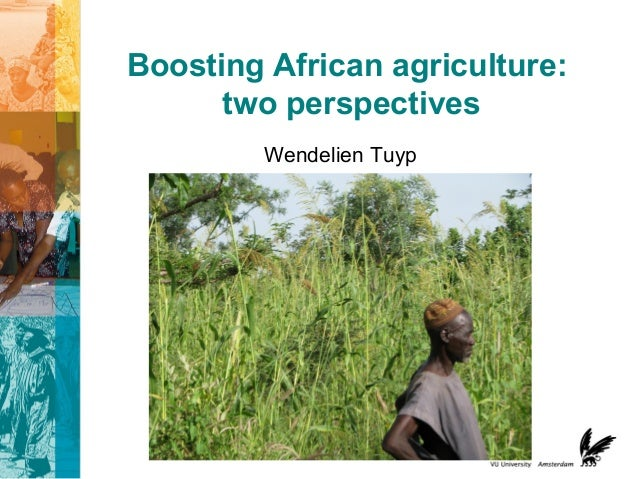 Boosting African agriculture: two perspectives Wendelien Tuyp