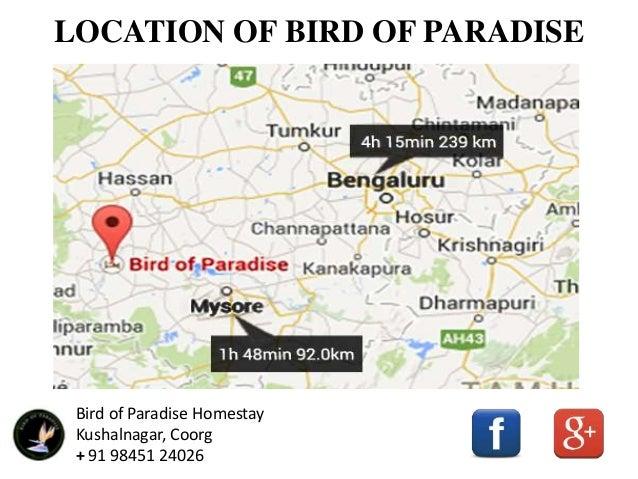 Bird Of Paradise Best Homestay In Kushalnagar Coorg