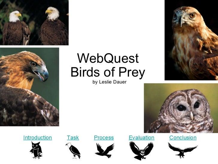 WebQuest  Birds of Prey  by Leslie Dauer