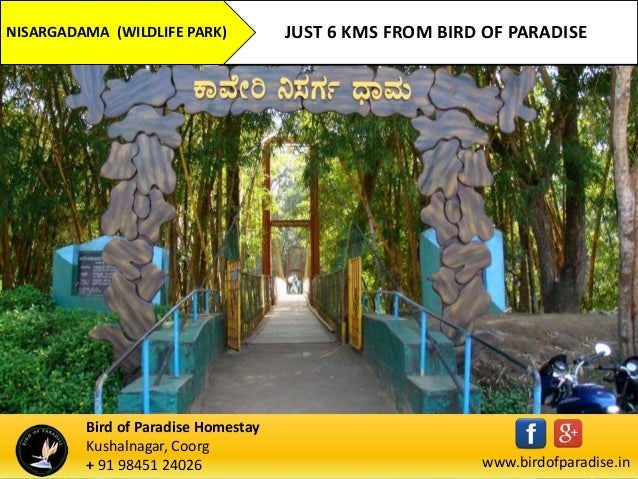 TOP TOURISM PLACES IN COORG NEAR BIRD OF PARADISE HOMESTAY - Top 10 destinations around the world for homestays