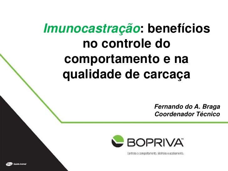 Imunocastração: benefícios      no controle do   comportamento e na   qualidade de carcaça                 Fernando do A. ...