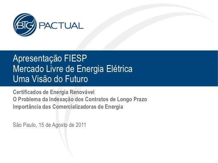 Apresentação FIESPMercado Livre de Energia ElétricaUma Visão do FuturoCertificados de Energia RenovávelO Problema da Index...