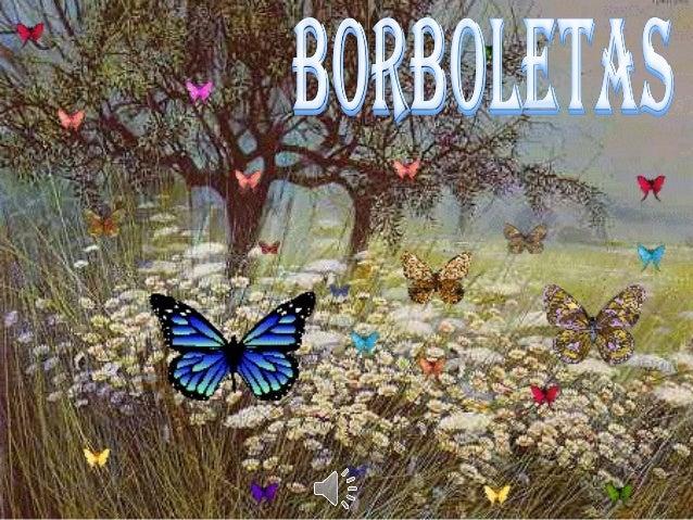 As Borboletas pertencem à ordem de insetos denominada Lepidóptera uma das divisões da grande classe Insecta, a qual, por s...