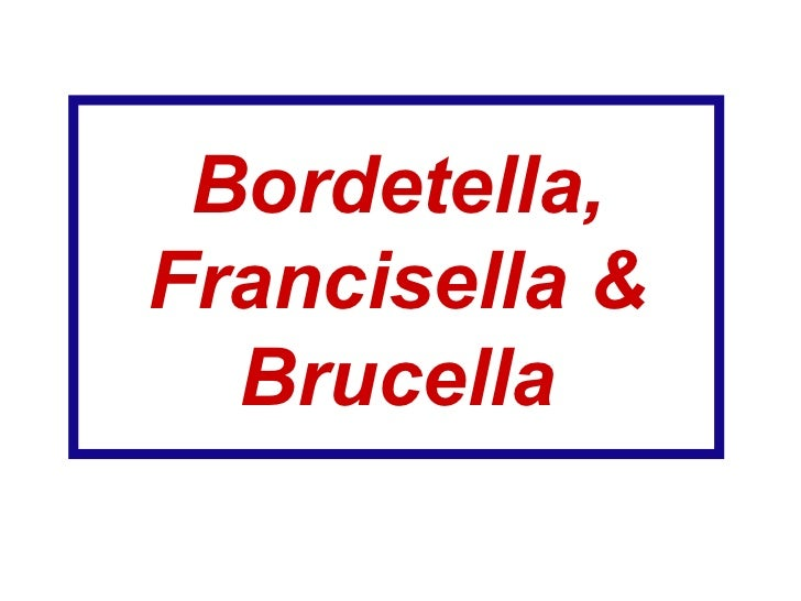 Bordetella, Francisella & Brucella