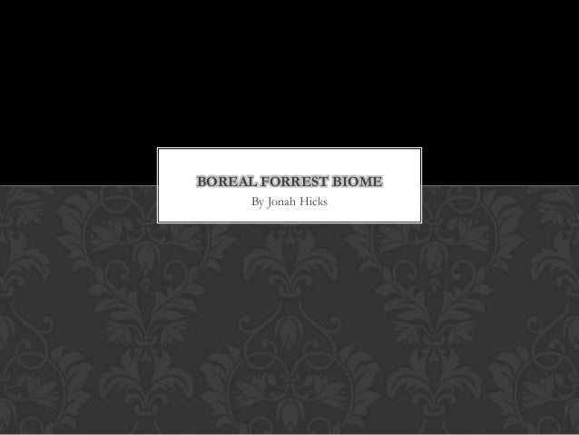 BOREAL FORREST BIOME     By Jonah Hicks