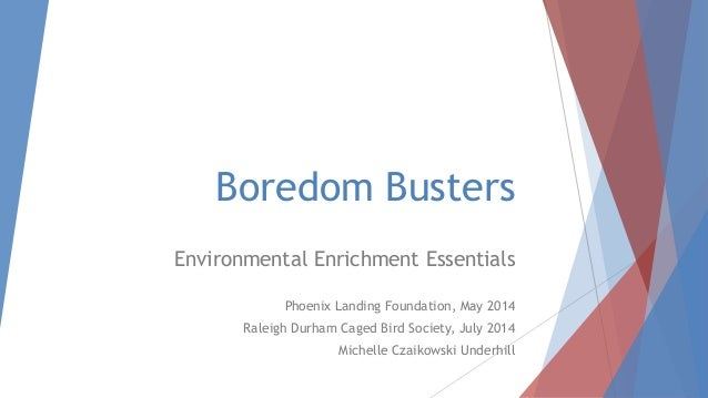 Boredom Busters Environmental Enrichment Essentials Phoenix Landing Foundation, May 2014 Raleigh Durham Caged Bird Society...