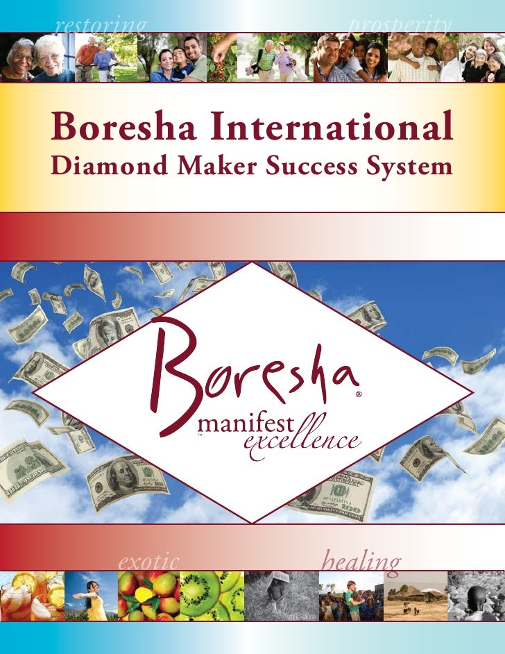 Boresha International Diamond Maker Success System