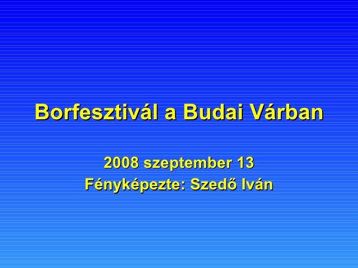 Borfesztivál a Budai Várban 2008 szeptember 13 Fényképezte: Szedő Iván
