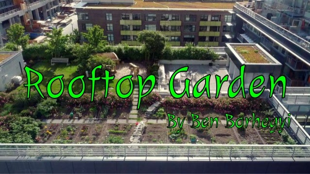 Rooftop Garden Proposal. The Proposal Plants Stand For Food And Health  Solar Stands For Renewables (May ...