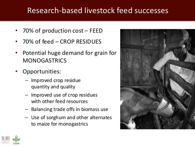 • 70% of production cost – FEED • 70% of feed – CROP RESIDUES • Potential huge demand for grain for MONOGASTRICS • Opportu...