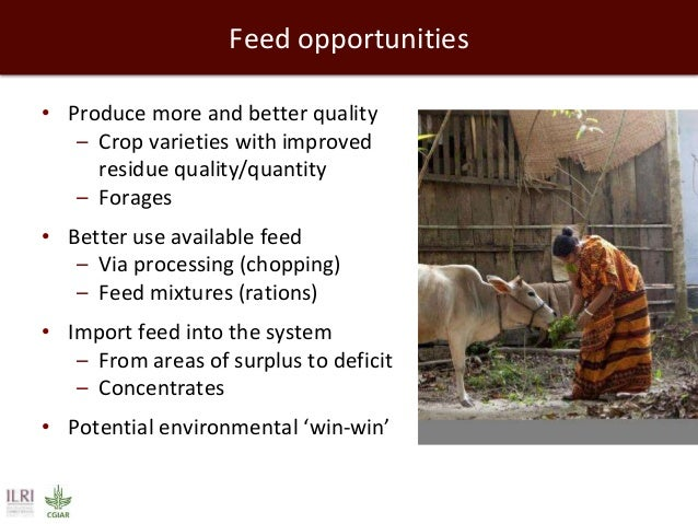 Feed opportunities • Produce more and better quality – Crop varieties with improved residue quality/quantity – Forages • B...