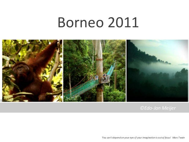 Borneo 2011                                        ©Edo-Jan Meijer     'You can't depend on your eyes if your imagination ...