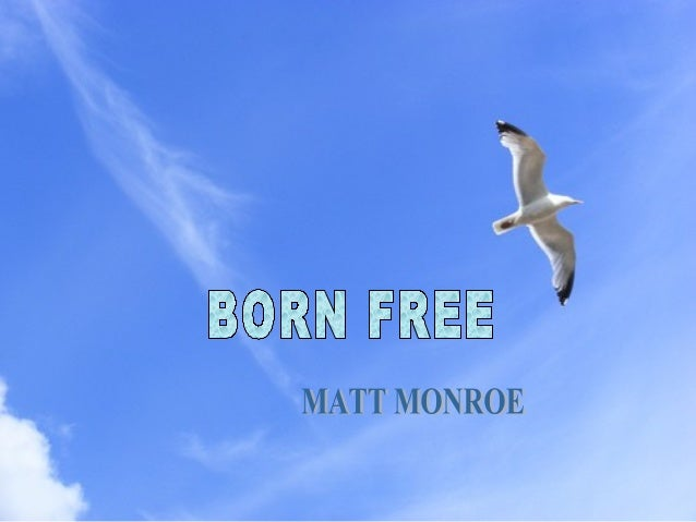Born free, as free as the wind blows