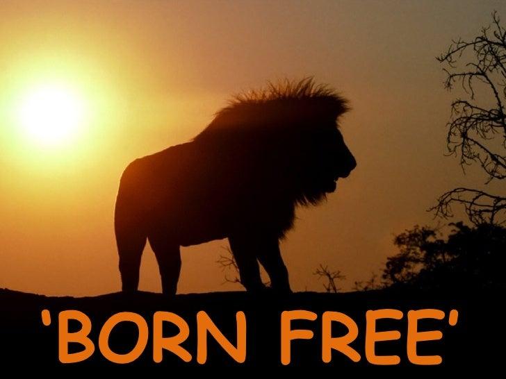 ' BORN FREE'