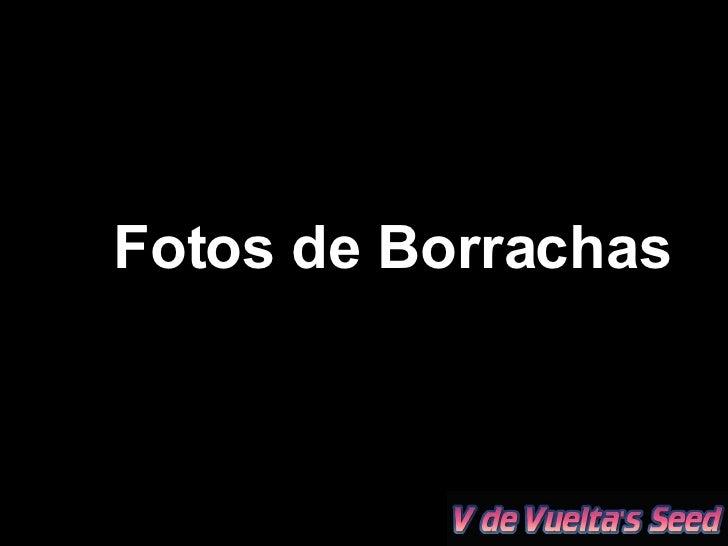 Fotos de Borrachas