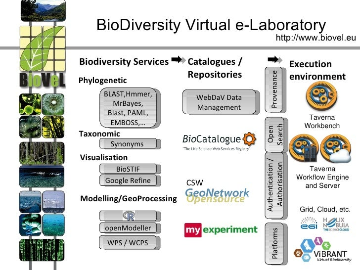 BioDiversity Virtual e-Laboratory                                                  http://www.biovel.euBiodiversity Servic...