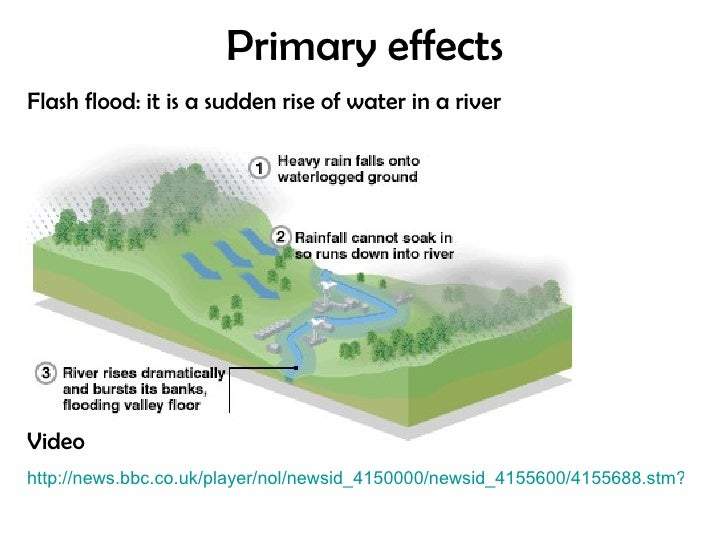 cause and effect floods essay