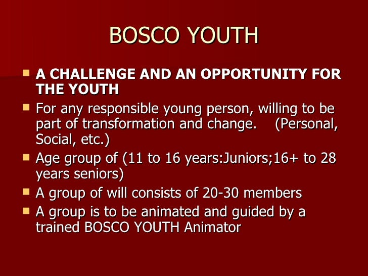 BOSCO YOUTH <ul><li>A CHALLENGE AND AN OPPORTUNITY FOR THE YOUTH </li></ul><ul><li>For any responsible young person, willi...