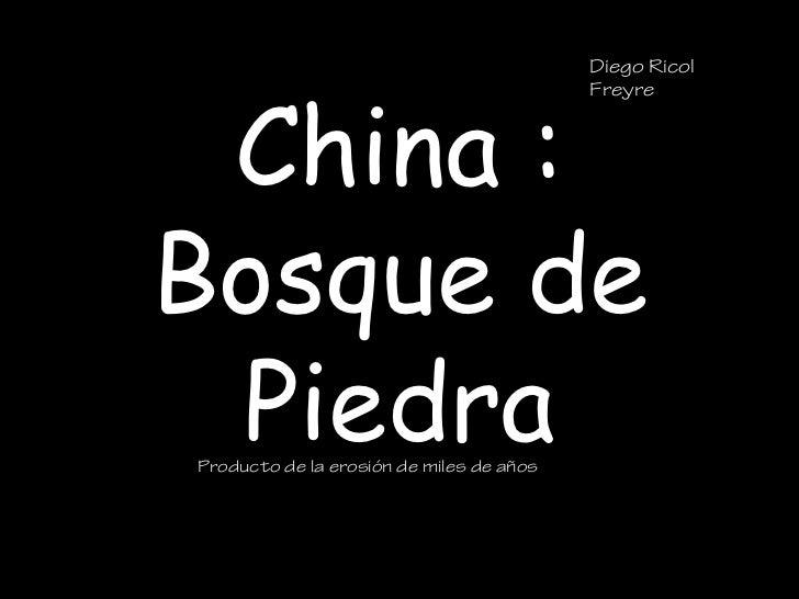 Diego Ricol China :                                          FreyreBosque de PiedraProducto de la erosión de miles de años
