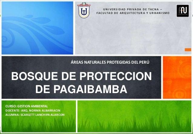 CURSO: GESTION AMBIENTAL DOCENTE: ARQ. NORMA ALBARRACIN ALUMNA: SCARLETT LANCHIPA ALARCON BOSQUE DE PROTECCION DE PAGAIBAM...