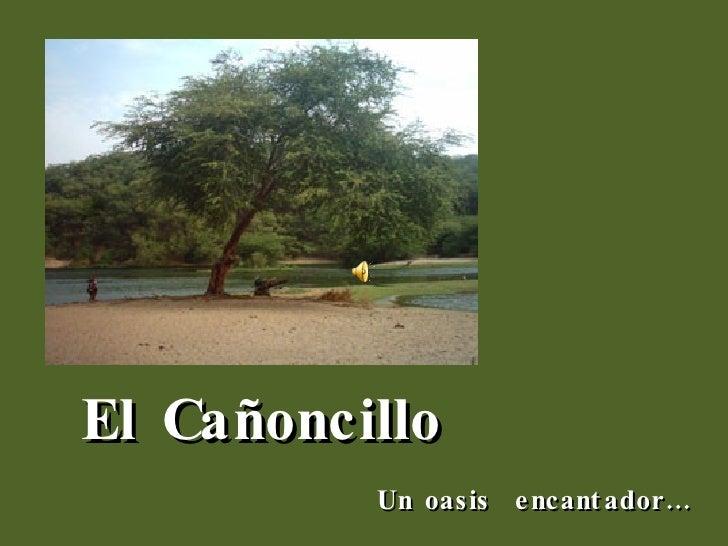 El Cañoncillo Un oasis  encantador…