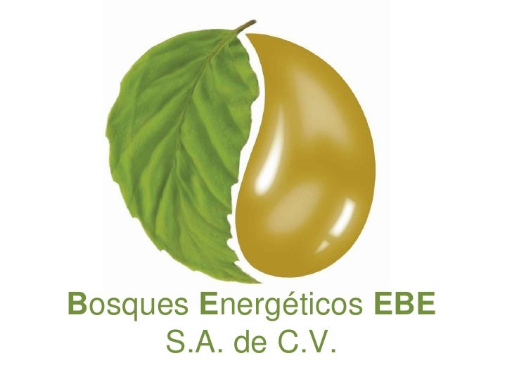 Bosques Energéticos EBE S.A. de C.V.<br />