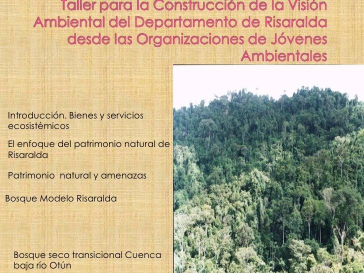 Introducción. Bienes y serviciosecosistémicosEl enfoque del patrimonio natural deRisaraldaPatrimonio natural y amenazasBos...