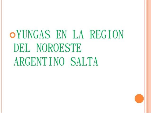 YUNGAS EN LA REGION  DEL NOROESTE  ARGENTINO SALTA