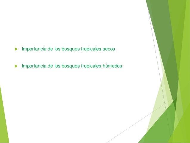  Importancia de los bosques tropicales secos Importancia de los bosques tropicales húmedos