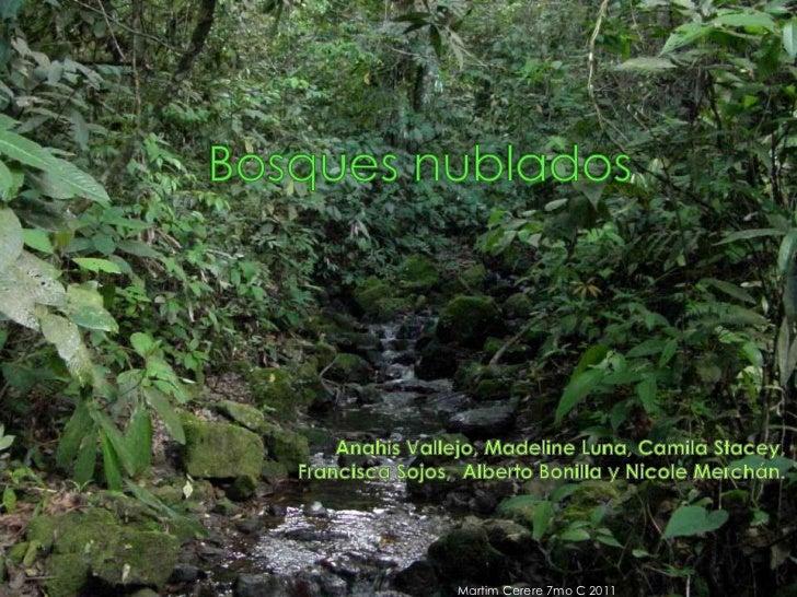 Bosques nublados<br />Anahis Vallejo, Madeline Luna, Camila Stacey,  <br />Francisca Sojos,  Alberto Bonilla y Nicole Merc...