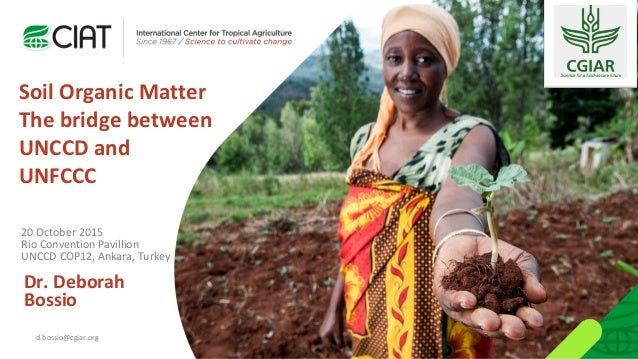 Soil Organic Matter The bridge between UNCCD and UNFCCC Dr. Deborah Bossio d.bossio@cgiar.org 20 October 2015 Rio Conventi...