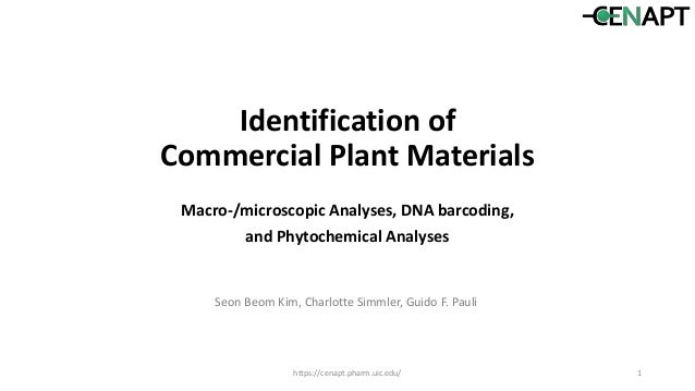 Identification of Commercial Plant Materials Macro-/microscopic Analyses, DNA barcoding, and Phytochemical Analyses https:...