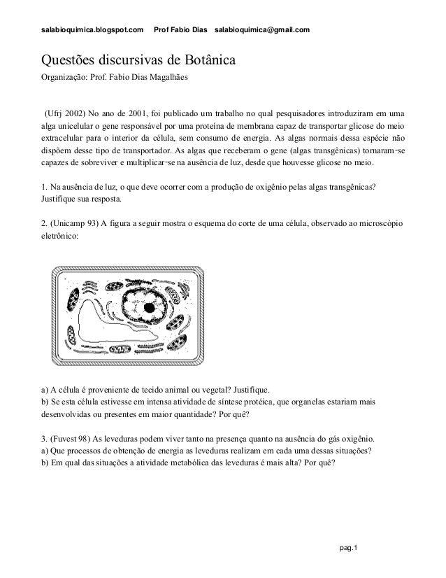 salabioquimica.blogspot.com Prof Fabio Dias salabioquimica@gmail.com pag.1 Questões discursivas de Botânica Organização: P...