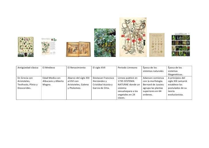<br />Antigüedad clàsicaEl MedievoEl RenacimientoEl siglo XVIIPeriodo L...