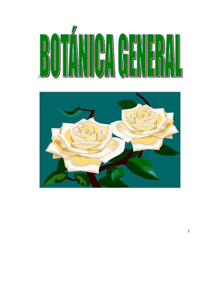 .l<br />I<br />CURSO DE BOTÁNICA GENERAL<br />INTRODUCCIÓN<br />Definición y ubicación  de la Botánica dentro del conocimi...