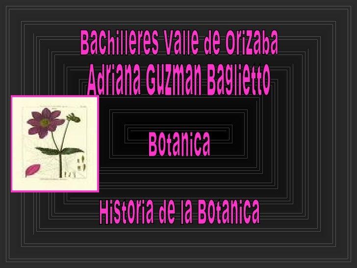 Bachilleres Valle de Orizaba  Adriana Guzman Baglietto Botanica Historia de la Botanica