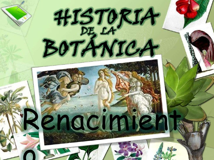 HISTORIA<br />DE   LA<br />BOTÁNICA<br />Renacimiento<br />