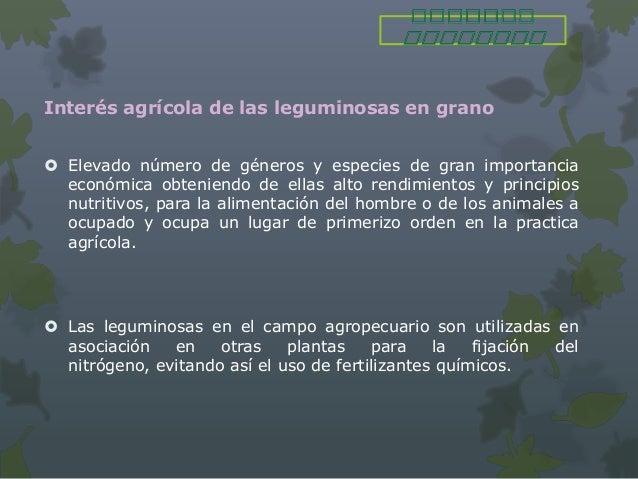 Interés agrícola de las leguminosas en grano Elevado número de géneros y especies de gran importancia  económica obtenien...