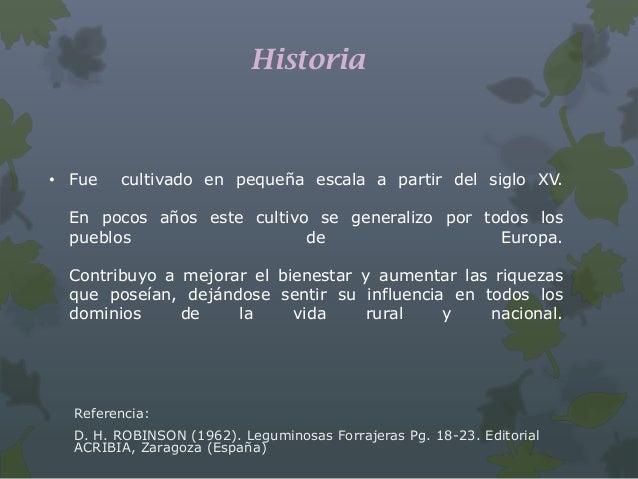D. H. ROBINSON (1962)• Plantas: herbáceas, erectas.• Hojas: trifoliadas, cuyos foliolos pueden distinguirse los   miembros...