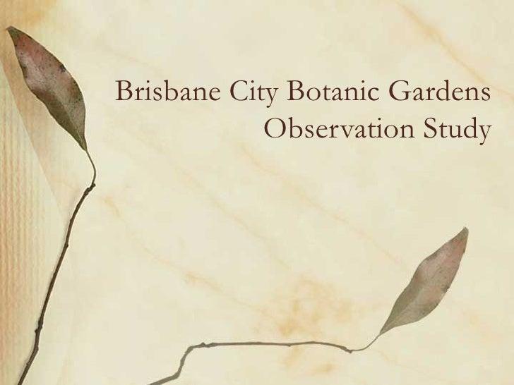 Brisbane City Botanic Gardens            Observation Study