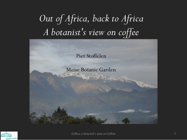 Out of Africa, back to Africa A botanist's view on coffee Piet Stoffelen Meise Botanic Garden 1Coffea: a botanist's view o...