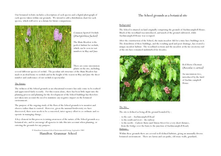 Our botanical website includes a description of each species and a digital photograph of                             The S...