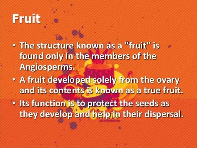 Botany fruits Slide 2