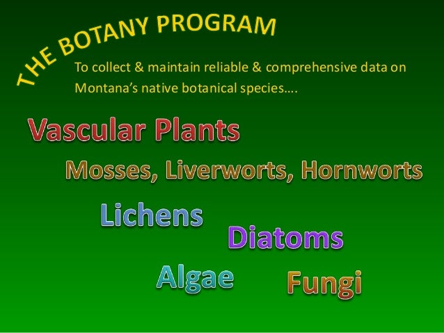 To collect & maintain reliable & comprehensive data on Montana's native botanical species….